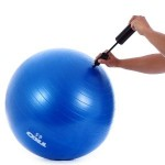 stability ball availale at Amazon.com
